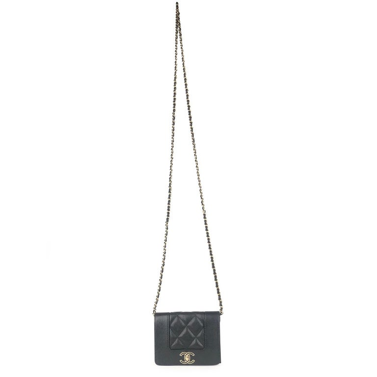 Chanel Mademoiselle Wallet on Chain Crossbody Bag For Sale 1