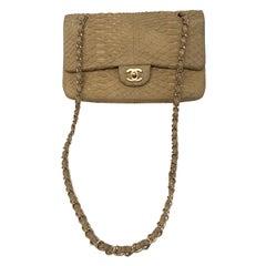 Chanel Python Double Flap Bag