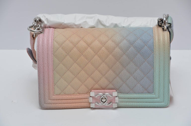 1bd12c22c31a Chanel Crossbody Bags 2018 | Stanford Center for Opportunity Policy ...