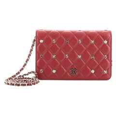 Chanel Symbolic Wallet On Chain Quilted Lambskin
