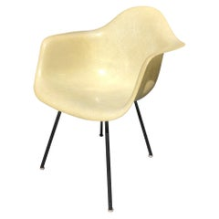 Charles and Ray Eames LAX Yellow Fiberglass Shell Chair for Herman Miller, 1949