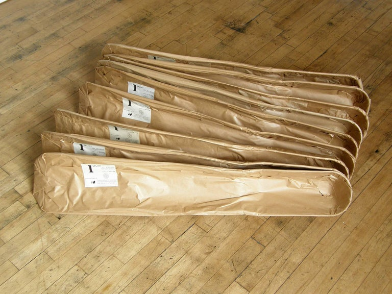 Mid-Century Modern Charles and Ray Eames Molded Plywood Leg Splint for Evans in Original Wrapper For Sale