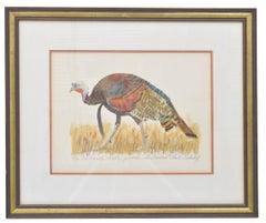 Rio Grande Turkey Gobbler, Signed Watercolor