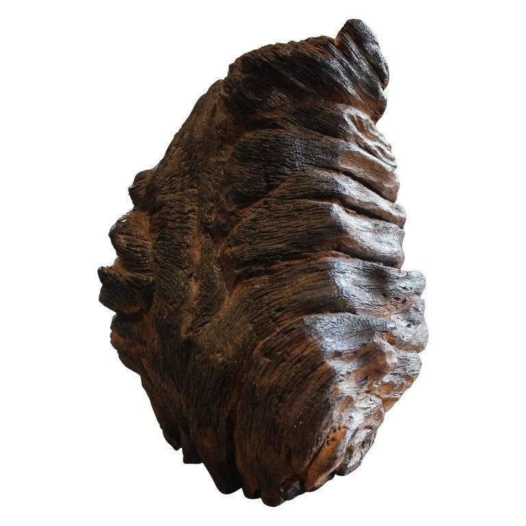 Carved Walnut Bust Sculpture For Sale 4