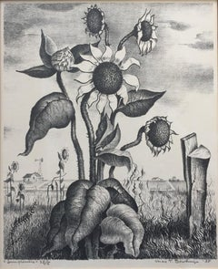 """Sunflowers""  West Texas"