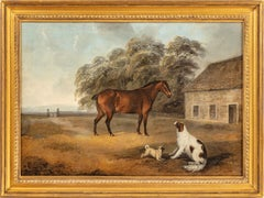 A Bay cob, spaniel and a pug outside a stable