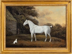 A Grey cob and a terrier, in a landscape