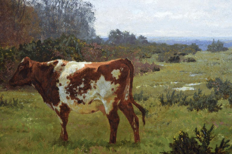 Charles Collins  British, (1851-1921) Cows Grazing in the Meadow Oil on canvas, signed & dated 1881 Image size: 21.75 inches x 35.75 inches  Size including frame: 30.25 inches x 44.25 inches  Alfred Charles Jerome Collins was born in Hampstead on 16