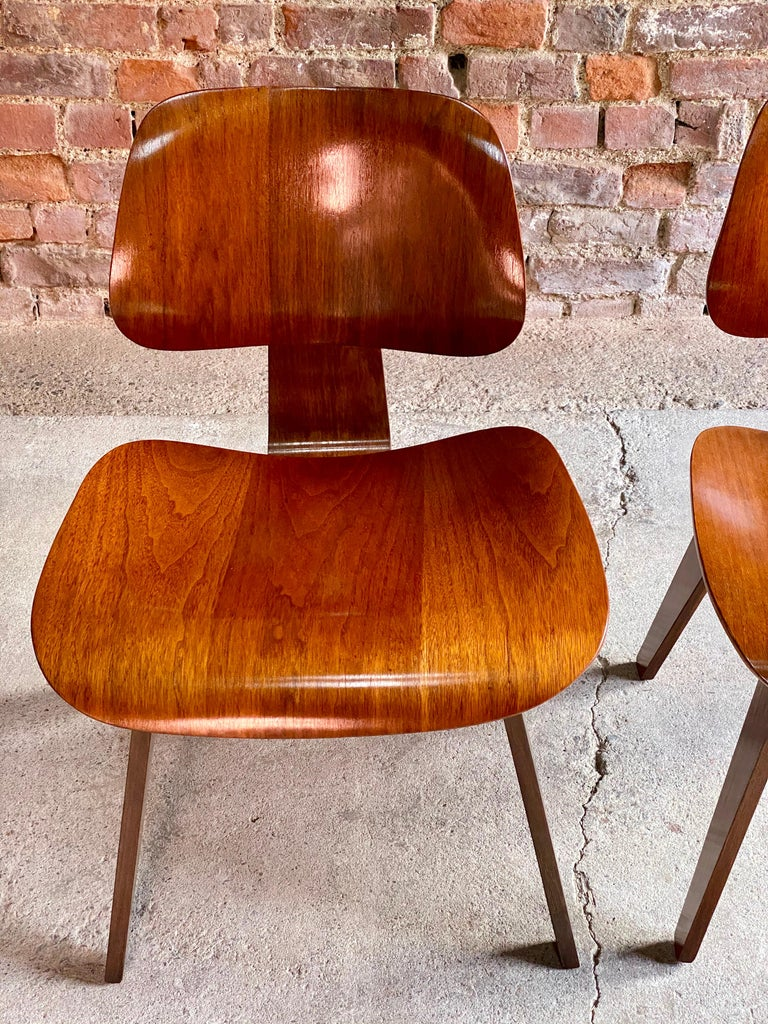 Charles Eames DCW Dining Chairs by Herman Miller, circa 1950 For Sale 4