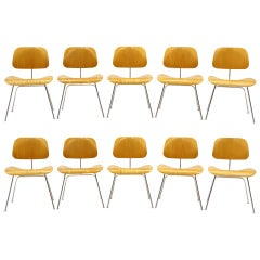 Charles Eames Plywood Dining Chairs, DCMs, Ten Available, Price is for Each