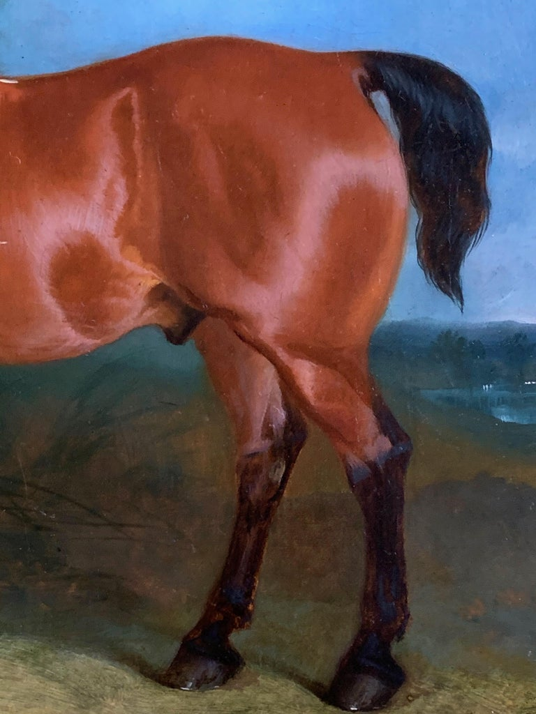 19th century oil on canvas a Bay Horse and a Terrier in an Landscape For Sale 7