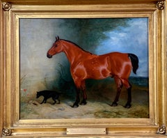 19th century oil on canvas a Bay Horse and a Terrier in an Landscape