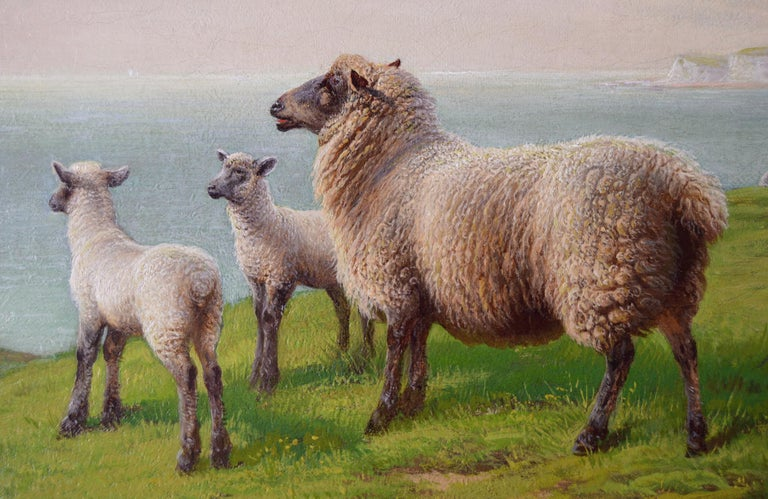 19th Century landscape oil painting of sheep grazing on a clifftop - Victorian Painting by Charles Jones (b.1836)