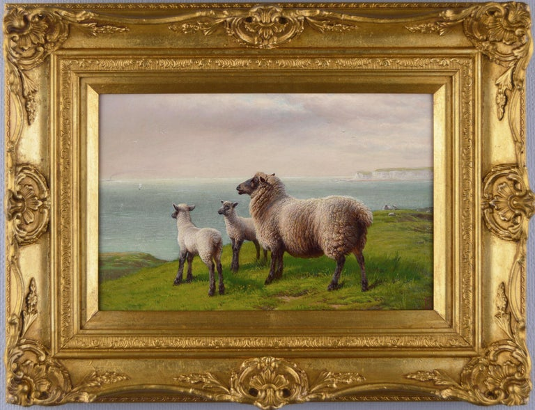Charles Jones (b.1836) Landscape Painting - 19th Century landscape oil painting of sheep grazing on a clifftop