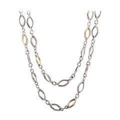 Charles Krypell Yellow Gold and Silver Long Chain Necklace
