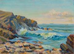 Rugged California Coast Landscape