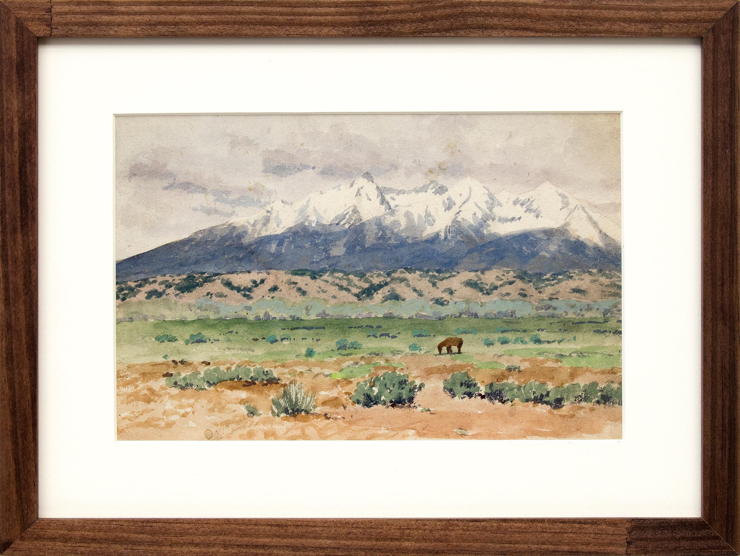 Blanca Peak, Sangre de Cristo Range, Colorado Mountain Landscape, Green, Blue