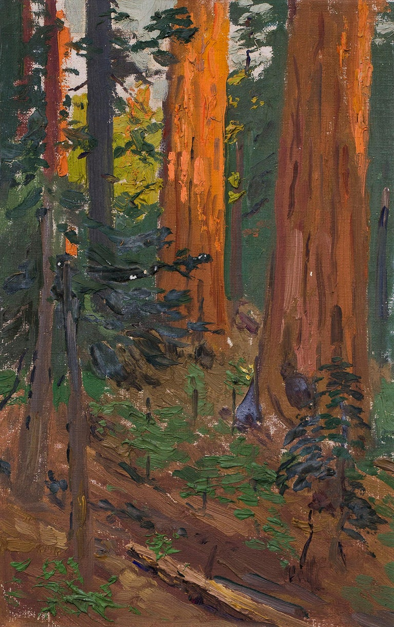 Interior Forest Scene with Redwood Trees, California, Landscape Oil Painting - Gray Landscape Painting by Charles Partridge Adams