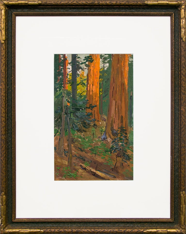 Charles Partridge Adams Landscape Painting - Interior Forest Scene with Redwood Trees, California, Landscape Oil Painting