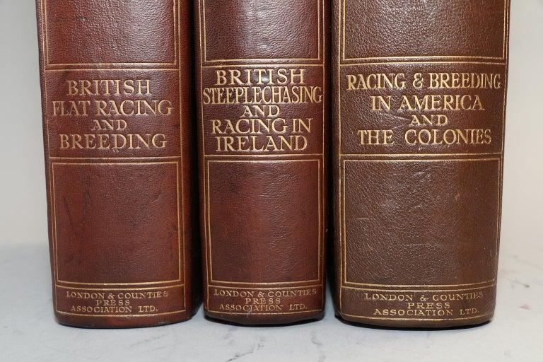 English Charles Richardson's