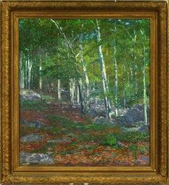 Summer- Kaelin's Woods