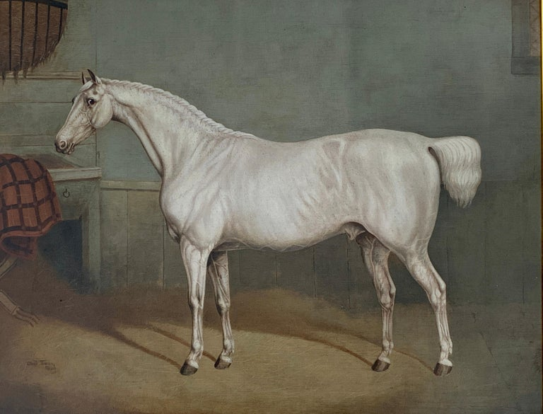 19th century English portrait of a White/grey hunter in a stable - Old Masters Painting by Charles Towne
