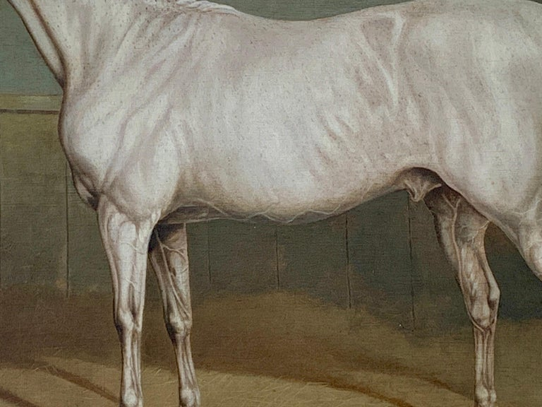 19th century English portrait of a White/grey hunter in a stable - Brown Animal Painting by Charles Towne