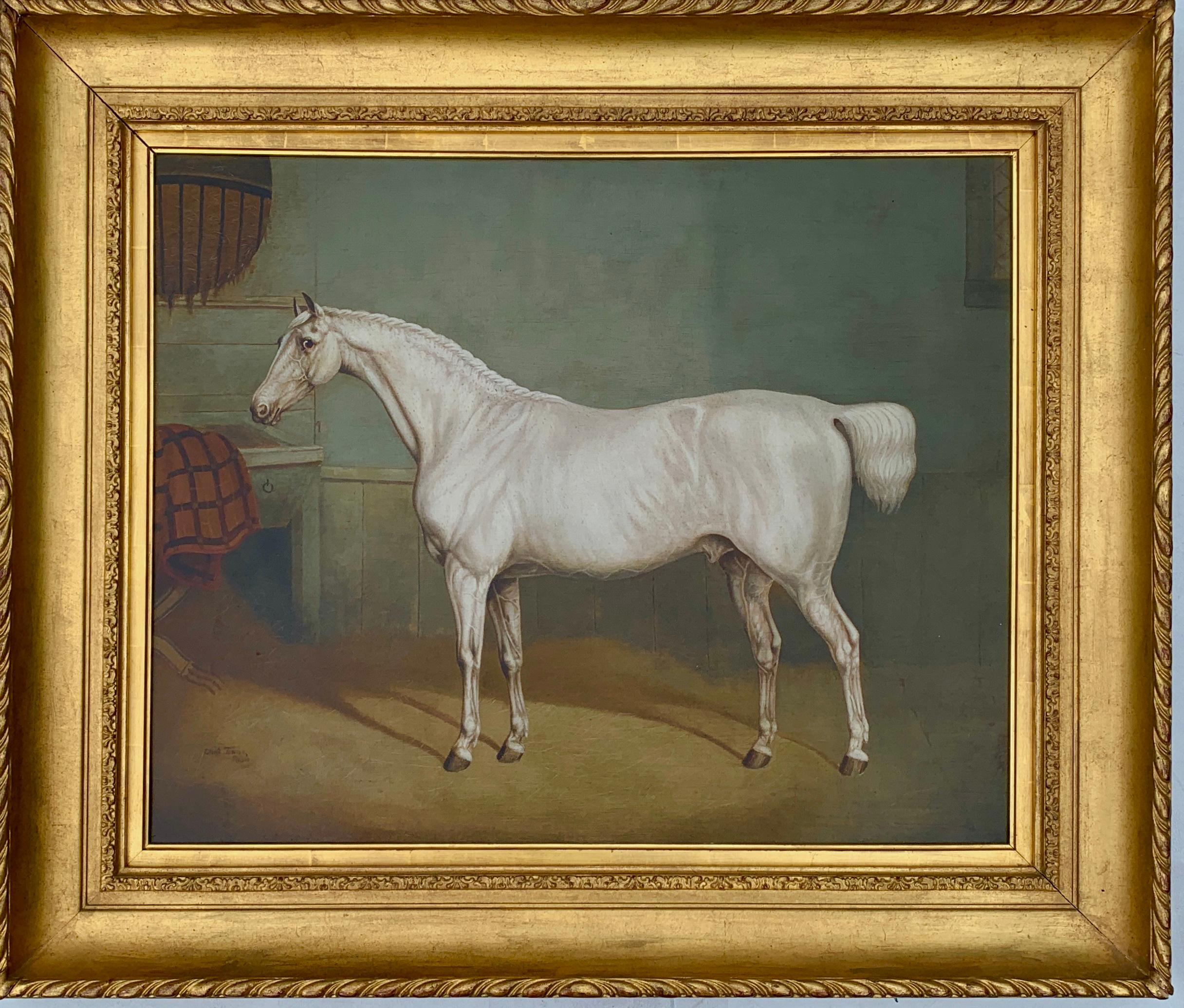 19th century English portrait of a White/grey hunter in a stable
