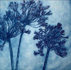 Charlie Davies, Agapanthus, Limited Edition Floral Print, Affordable Art