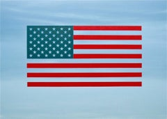 """""""Ideograph"""" Pop-Art American Flag Contemporary Oil Paint Blue Red Bright"""