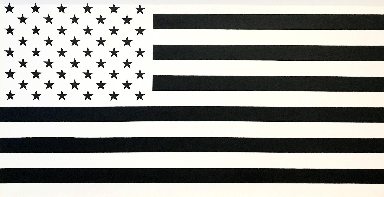 """White and Black (Negative Image)""   Americana, Large Flag Painting, Pop Art"