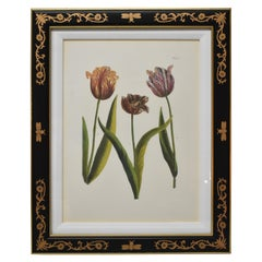 Chelsea House December Tulip A Bumble Bee Frame