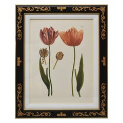 Chelsea House December Tulip D #988 Bumble Bee Frame