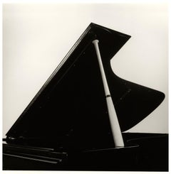 Untitled (Grand Piano/Bat)