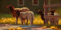 """Free Range"" Sheep in Dramatic Summer Evening Light, Bright Green Background"