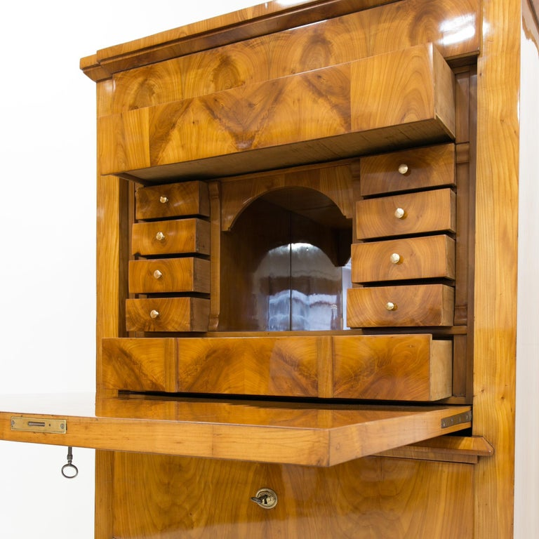 Cherrywood Secrétaire, Germany, 19th Century For Sale 3