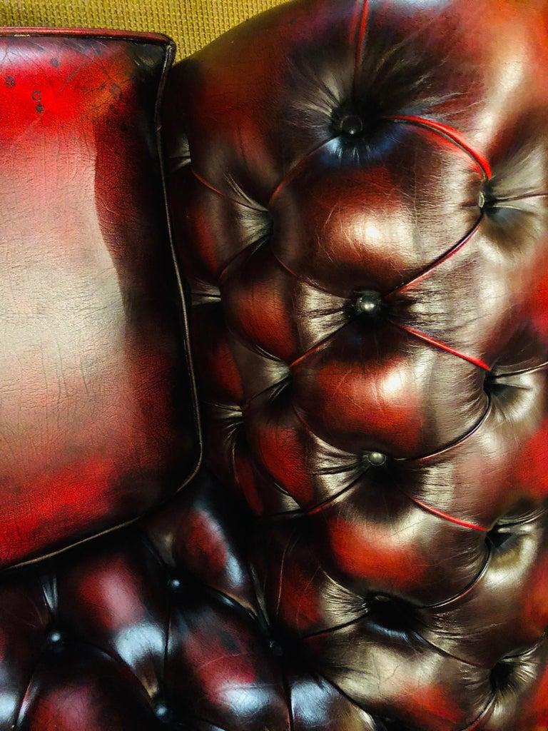 Chesterfield 2-Seat Centurion Genuine Leather Oxblood, England 6