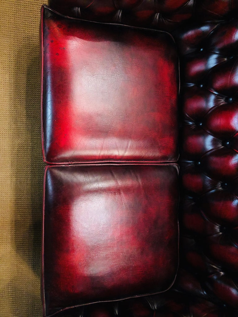 Chesterfield 2-Seat Centurion Genuine Leather Oxblood, England In Good Condition In Berlin, DE