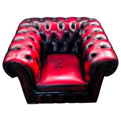 Chesterfield Armchair Centurion Genuine Leather Oxblood/Bordeaux