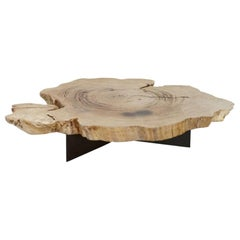 Chestnut Coffee Table with Metal Base, Unique Piece, Made in Italy