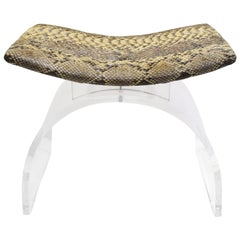 Chic Bench in Lucite with Python Seat, 1970s