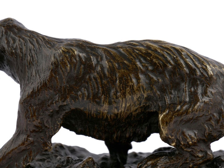 """Chien Epagneul Francais"" Bronze Sculpture by Christophe Fratin For Sale 6"