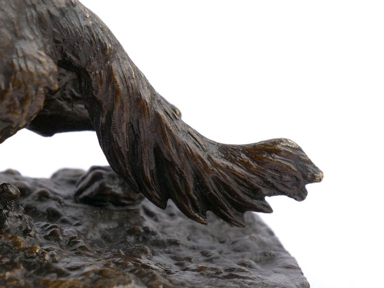 """Chien Epagneul Francais"" Bronze Sculpture by Christophe Fratin For Sale 8"