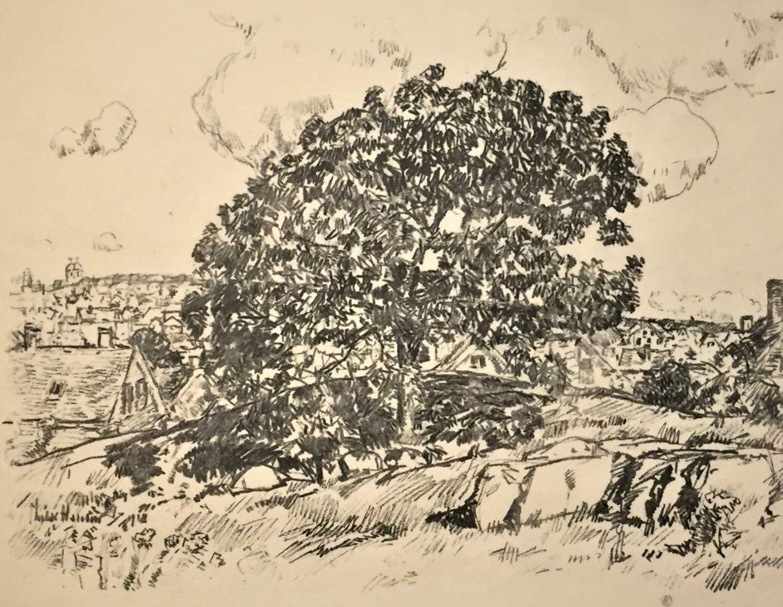 The Oak (Gloucester)