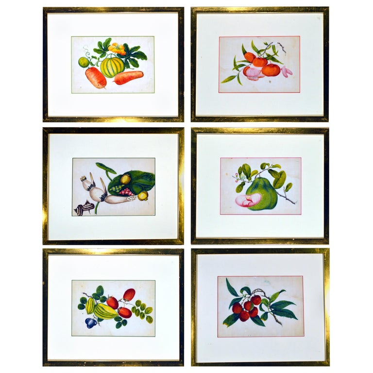 China Trade Watercolor Paintings of Vegetables, Set of Six For Sale