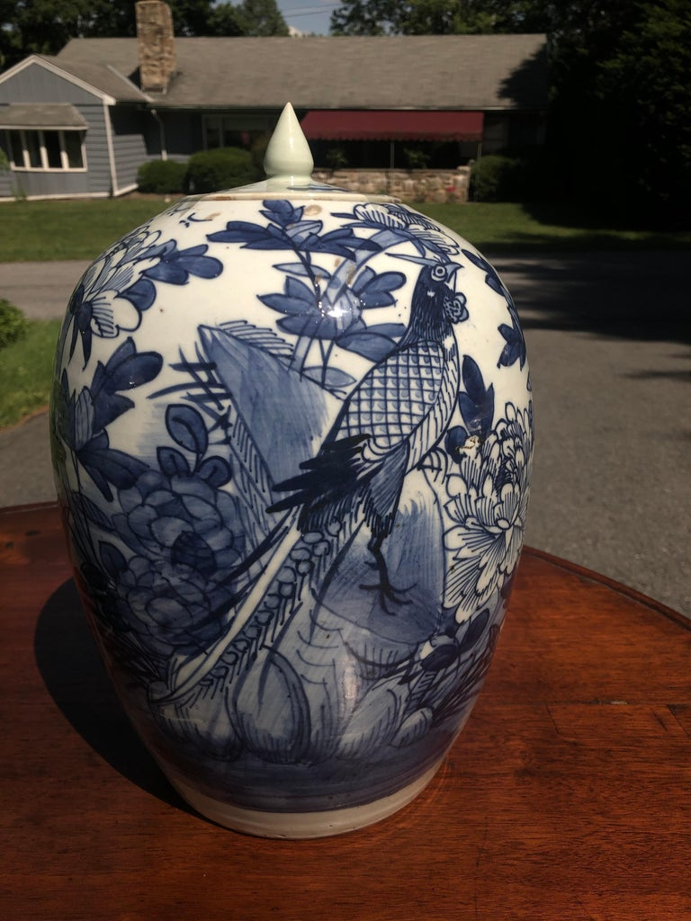 Other Chinese Blue and White Porcelain Ginger Jar High with Lid, Late 12th Century For Sale