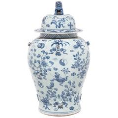 Chinese Blue and White Scholars' Joy Ginger Jar