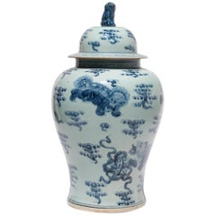 Chinese Blue and White Shizi Jar