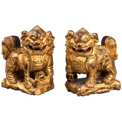 Chinese Carved Giltwood Foo Dogs