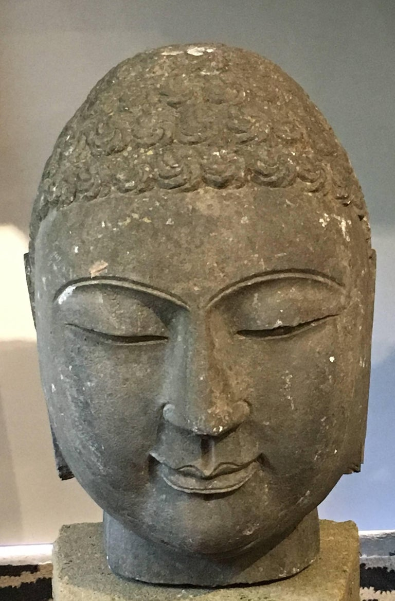 A sensitively carved limestone monumental head of the Buddha, China, mid-20th century.